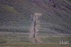mammoth071