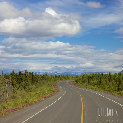 To Haines Junction023