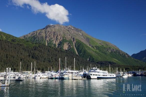 Kenai Fjords NP 5