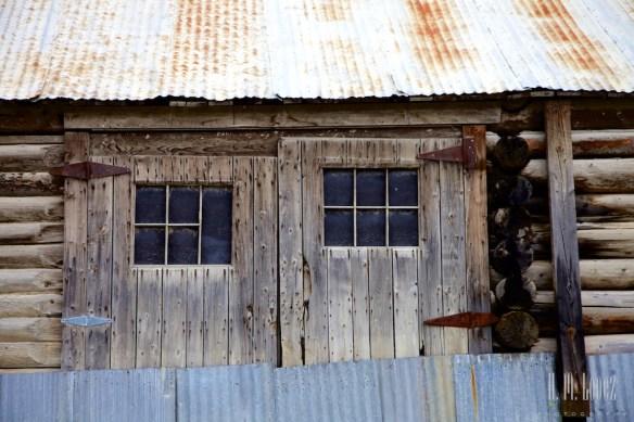Dawson City 87