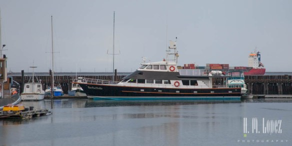 The Lu Lu Belle from our nature cruise in Valdez, Ak was in port.