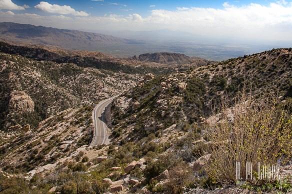 Tucson-84
