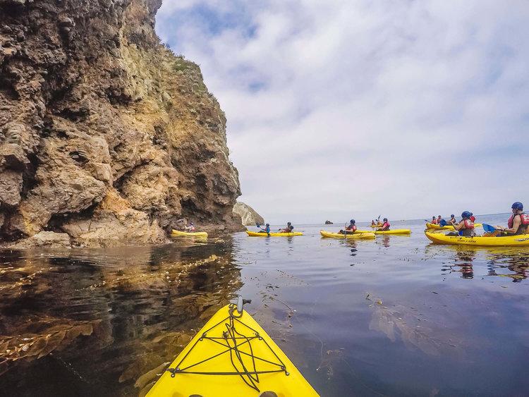 kayak tours - channel islands adventure company | kayaking & snorkel