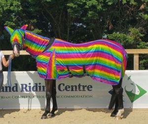Pride Horse
