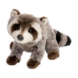 ringo raccoon