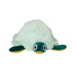 theo turtle