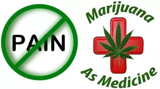 , Why Cannabis Is a Better Pain Medication Than Any Other