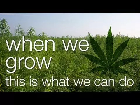 , When We Grow, This Is What We Can Do