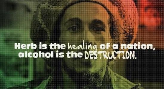 , Cannabis Vs. Alcohol: Socioeconomic Effects