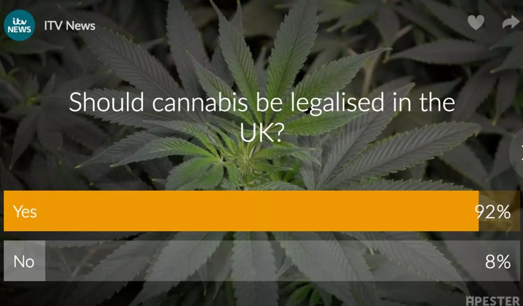 ITV News Cannabis Poll, ITV News Cannabis Poll Shows Overwhelming Majority Want Cannabis Legalised in the UK