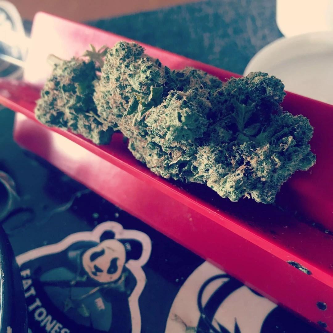 """Green Crack, """"Green Crack"""" and Cannabis Strain Names, ISMOKE"""