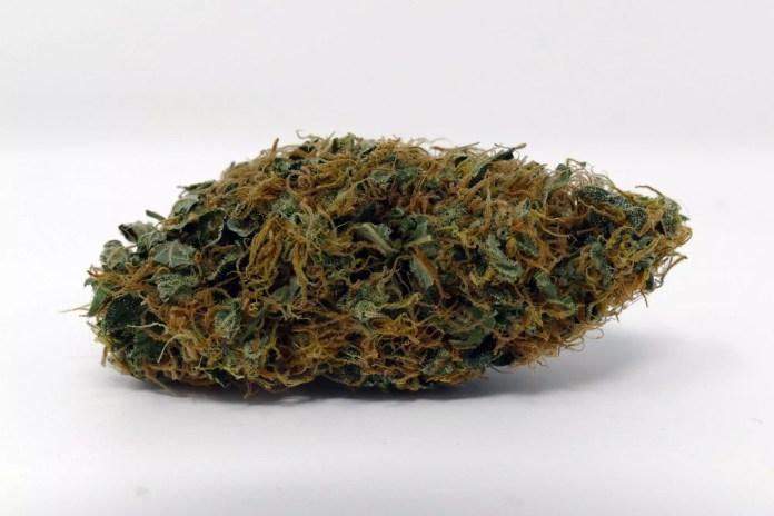 Organic White Widow, White Widow Cannabis Strain Information Feature