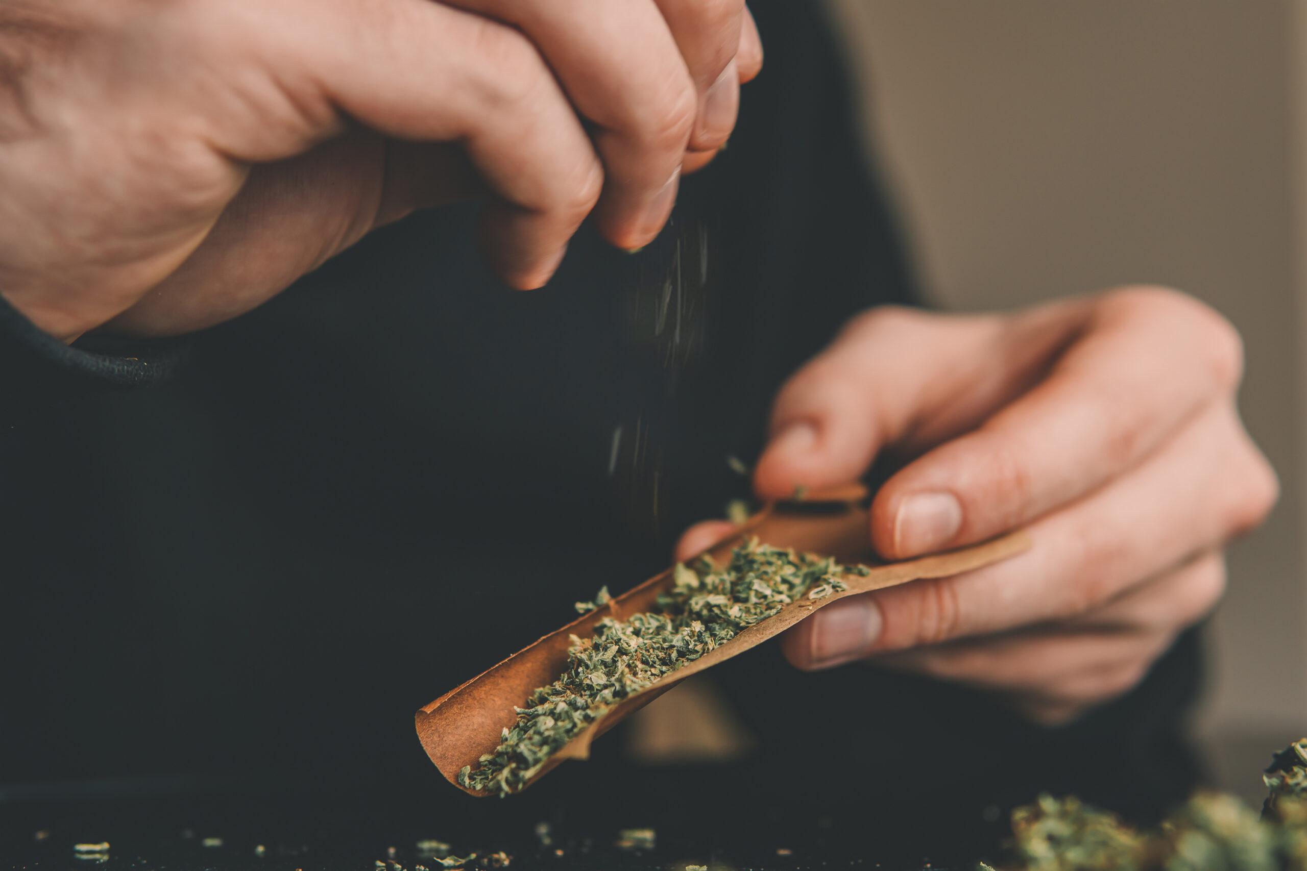 México publicó el reglamento para el uso medicinal de la marihuana