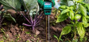 What are the Objectives of Soil Testing