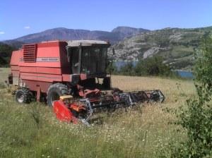 Travaux Agricoles MF34