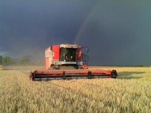 Travaux Agricoles MF7274