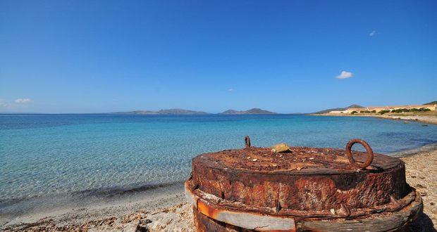 Boa spiaggiata nella Diramazione di Trabuccato.(foto E.Cossu)