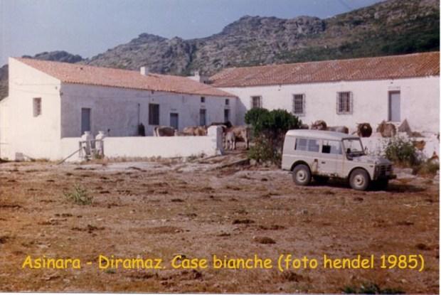 case bianche hendel_1985