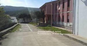 direzione C.R .ASINARA