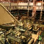 TheUniversity of Oxford's museum of anthropology and world archaeology