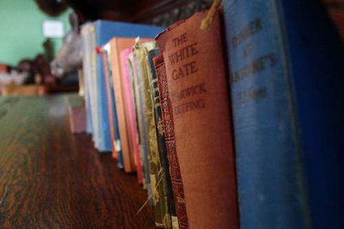 漫画や本を読む