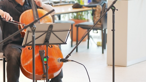 せっかく高いお金を払って買ったチェロなどは、楽器買取専門サイトで売ろう!