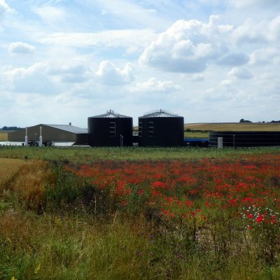 Do or dry? The future of UK anaerobic digestion