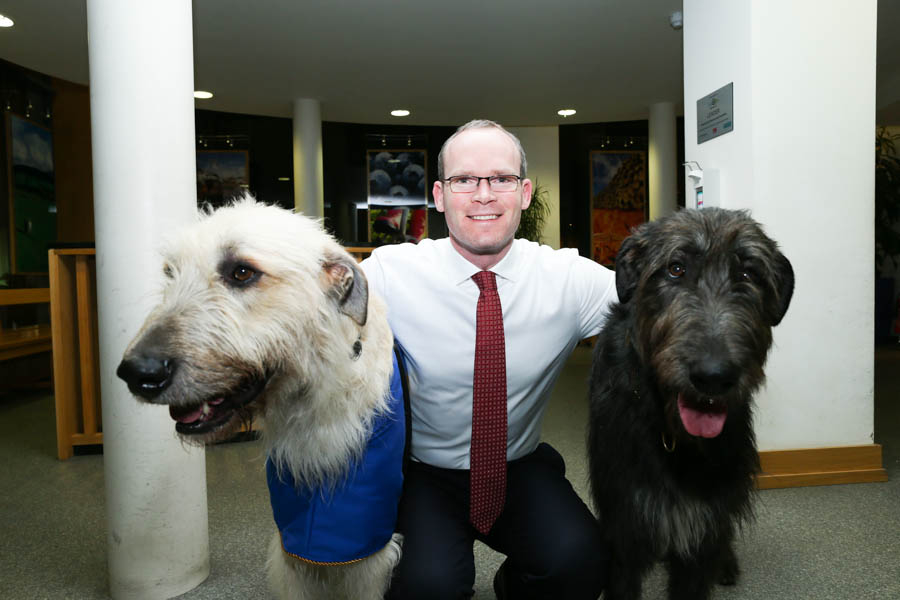 Minister Simon Coveney with two Irish Wolfhounds