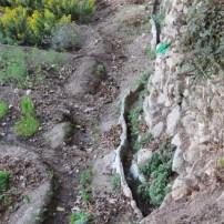 Sataf irrigation