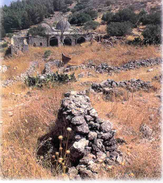 http://www.palestineremembered.com/Safad/al-Nabi-Yusha'/SatelliteView.html
