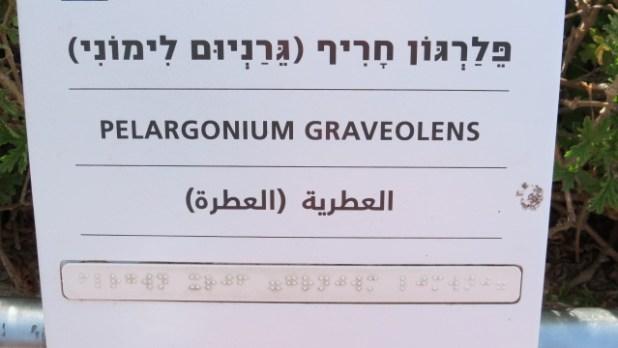 Ramat Hanadiv Garden for the Blind