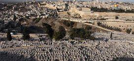 http://www.routard.com/photos/israel/134116-jerusalem_depuis_le_mont_des_oliviers.htm