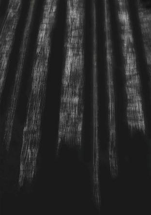 black-forest-medium