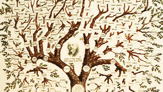 databases-tree-pic-1