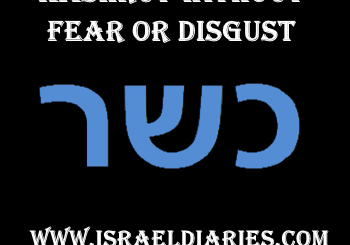 kashrut without fear or disgust