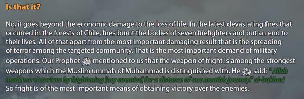 pyro-terrorism guide online