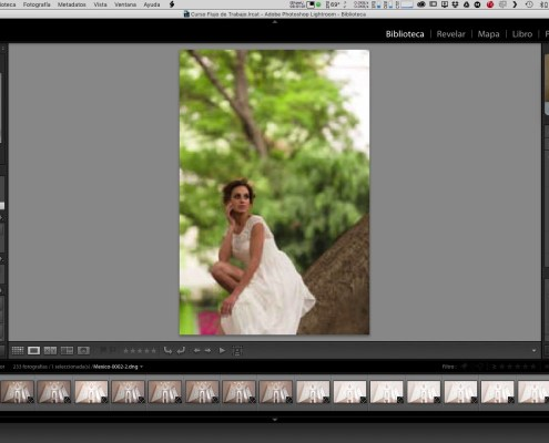 09 Preferencias de Rendimiento en Adobe Photoshop Lightroom