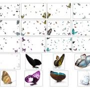 Superposición de Mariposas