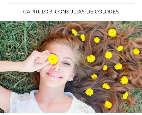 Consulta de Colores