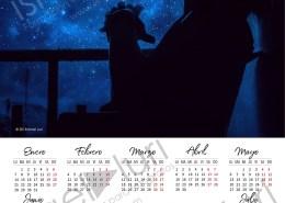 Calendario 2019 Mod. 1 en PSD y comienzo en Lunes
