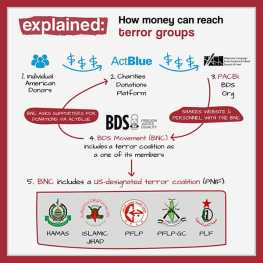 bds financial connections