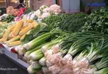 photo display of fresh vegetbles