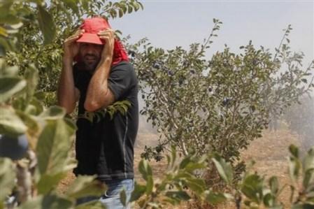 Palestinian man react