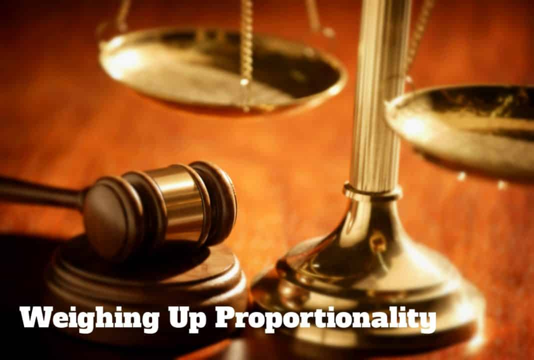 Image result for image of the principle of proportionality