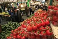 Israeli tomatoes