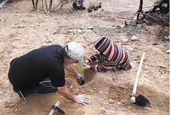 Tree planting for Tu Bishvat
