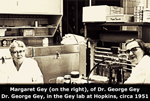 Margaret Gey, Wife Of George Otto Gey Inside Gey Lab At Johns Hopkins Hospital