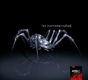 AMD Spider