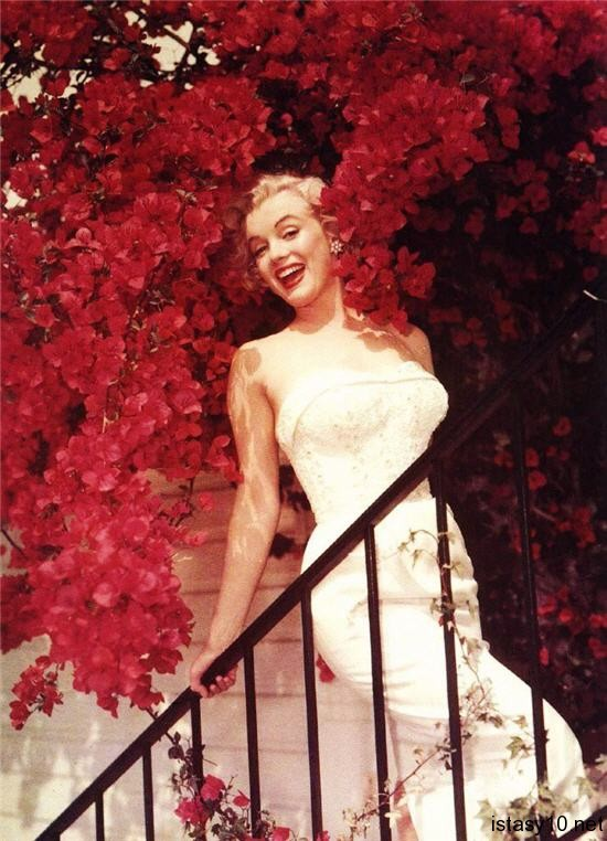 Marilyn Monroe Red istasy10net