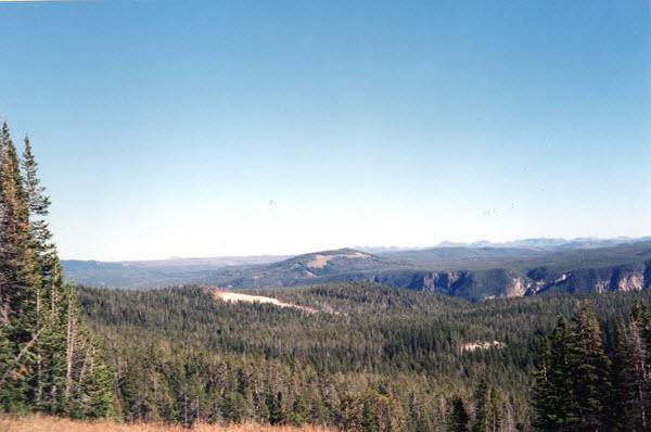 Traffic In Yellowstone Stephen Evans border=